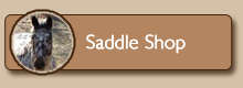 Saddle Shop