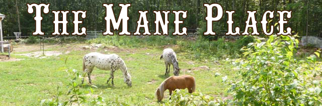 Feed Store, Tack, Supplies, Apparel - Uxbridge, MA - The Mane Place